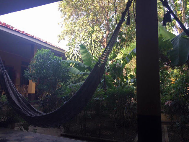 The Monkey Republic - Leon, Nicaragua