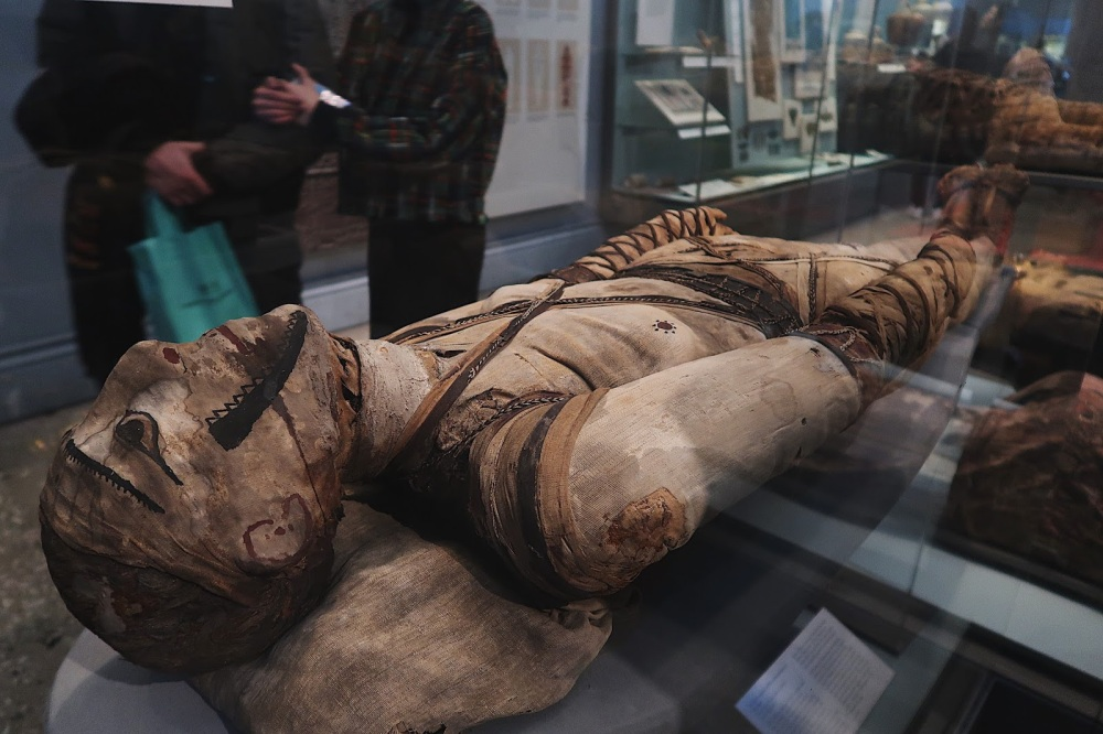 Ancient Egyptian mummy in the British Museum, London